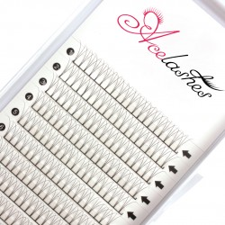 Best Wholesale Pre Made 3D Volume Lash Online